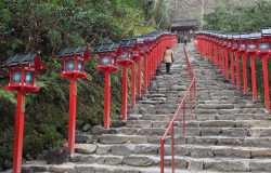 5 jours à Kyoto : visite de la ville et espacape dans les montagnes