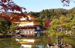 Que visiter au nord de Kyoto : Kinkaku-ji, Ryoan-ji, Ninna-ji et les autres...