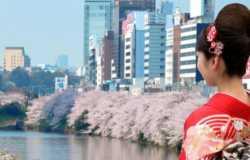Organiser voyage au Japon : nos conseils pratiques