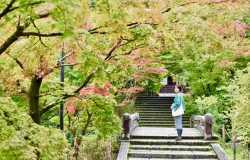 Quand partir en voyage au Japon et découvrir Tokyo