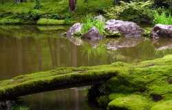 Que visiter au l'Ouest Kyoto