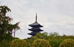 Temple To-ji à Kyoto et sa majestueuse pagode