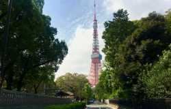 Tokyo Tower, un observatoire à 250 mètres de haut pour vue panoramique sur la ville