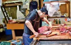 Tsukiji, le marché aux poissons de Tokyo
