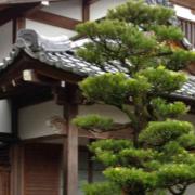 arts traditionnels au japon. Black Bedroom Furniture Sets. Home Design Ideas